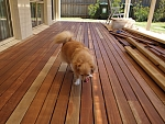 how to clean a deck before oiling